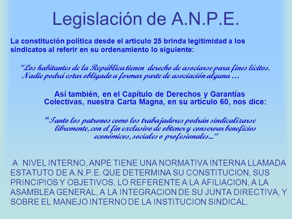 Legislación de A.N.P.E.La constitución política desde el articulo 25 brinda legitimidad a los.