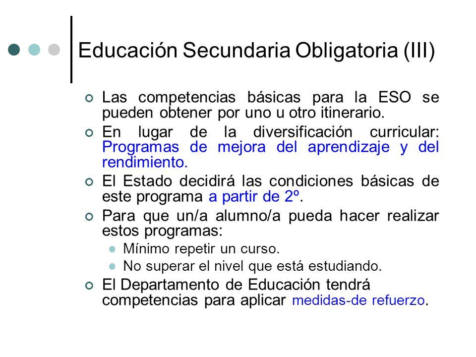 Educación Secundaria Obligatoria (III)
