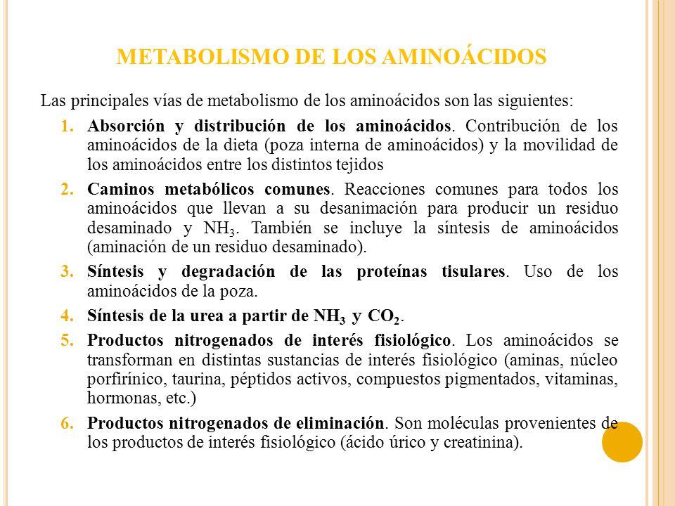 medicamentos para quitar el dolor de acido urico control acido urico gota pasas y acido urico