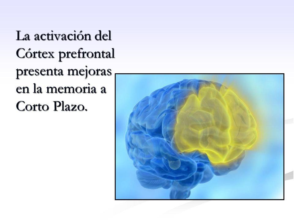 La activación del Córtex prefrontal presenta mejoras en la memoria a Corto Plazo.