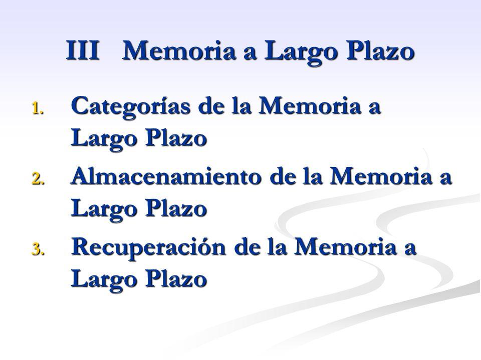 III Memoria a Largo Plazo