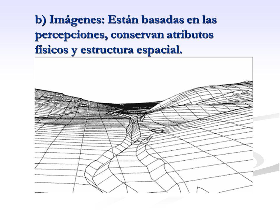 b) Imágenes: Están basadas en las percepciones, conservan atributos físicos y estructura espacial.