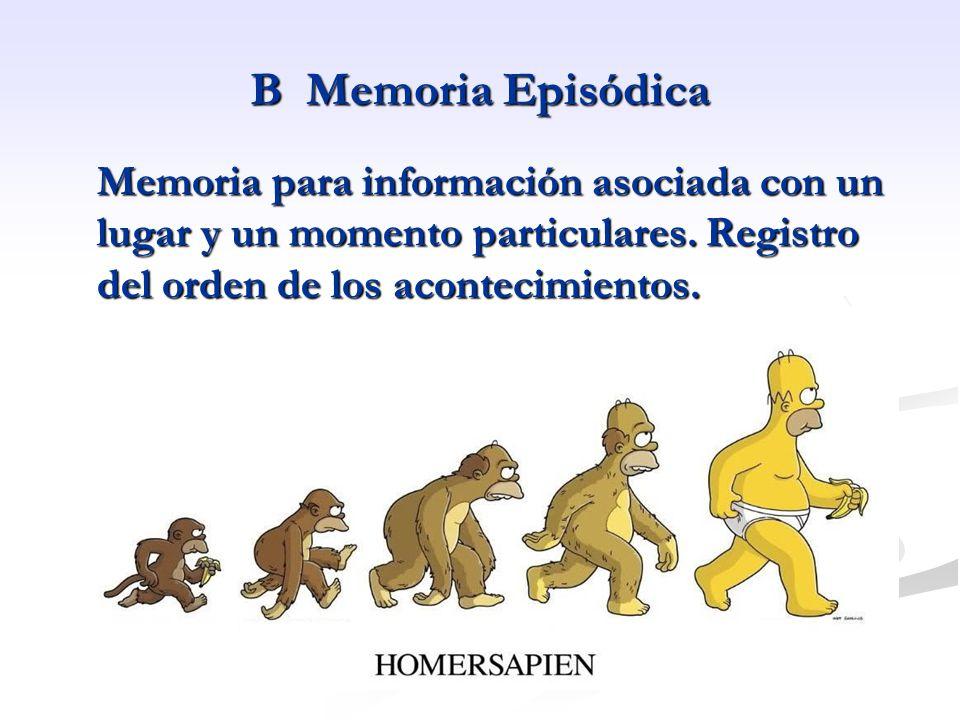 B Memoria Episódica Memoria para información asociada con un lugar y un momento particulares.