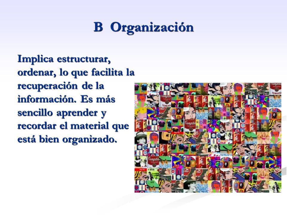 B Organización