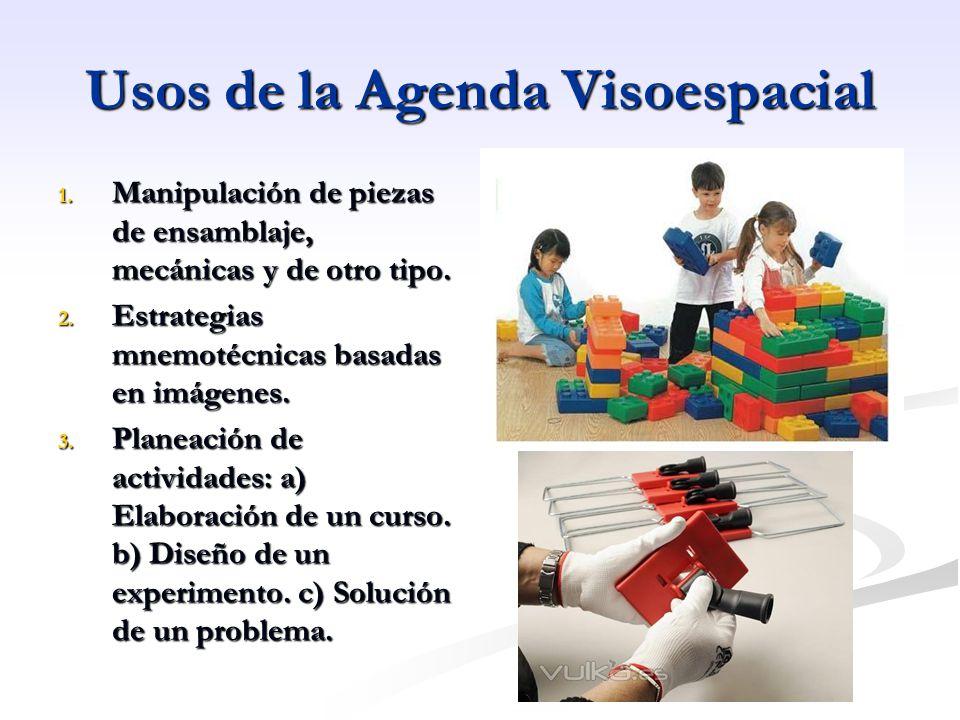 Usos de la Agenda Visoespacial