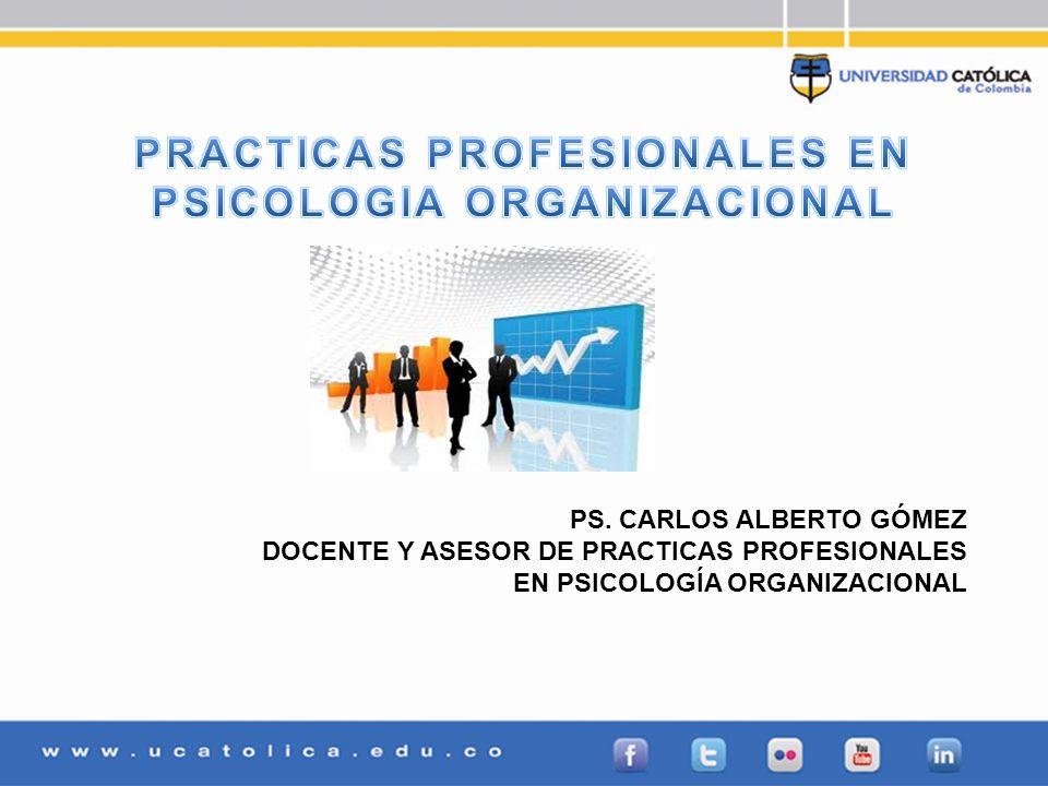PRACTICAS PROFESIONALES EN PSICOLOGIA ORGANIZACIONAL