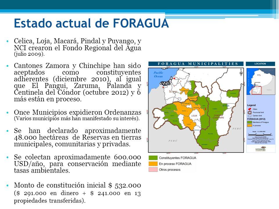 Estado actual de FORAGUA