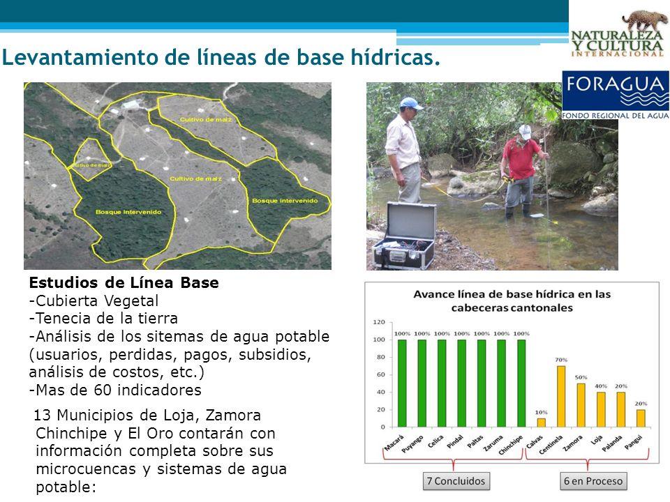Levantamiento de líneas de base hídricas.