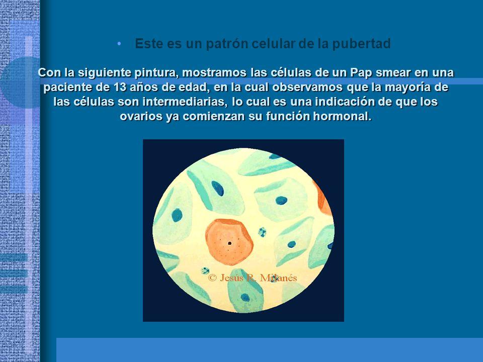 Este es un patrón celular de la pubertad