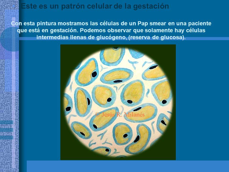 Este es un patrón celular de la gestación