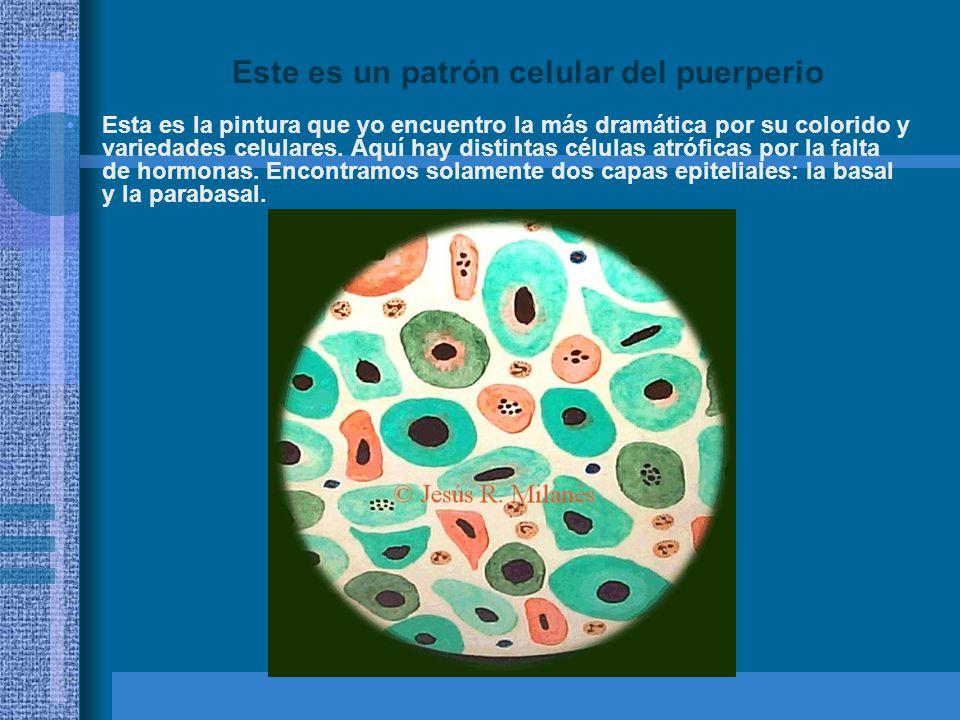 Este es un patrón celular del puerperio