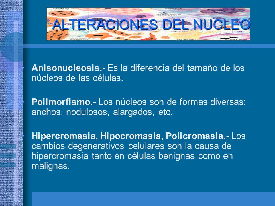 ALTERACIONES DEL NUCLEO
