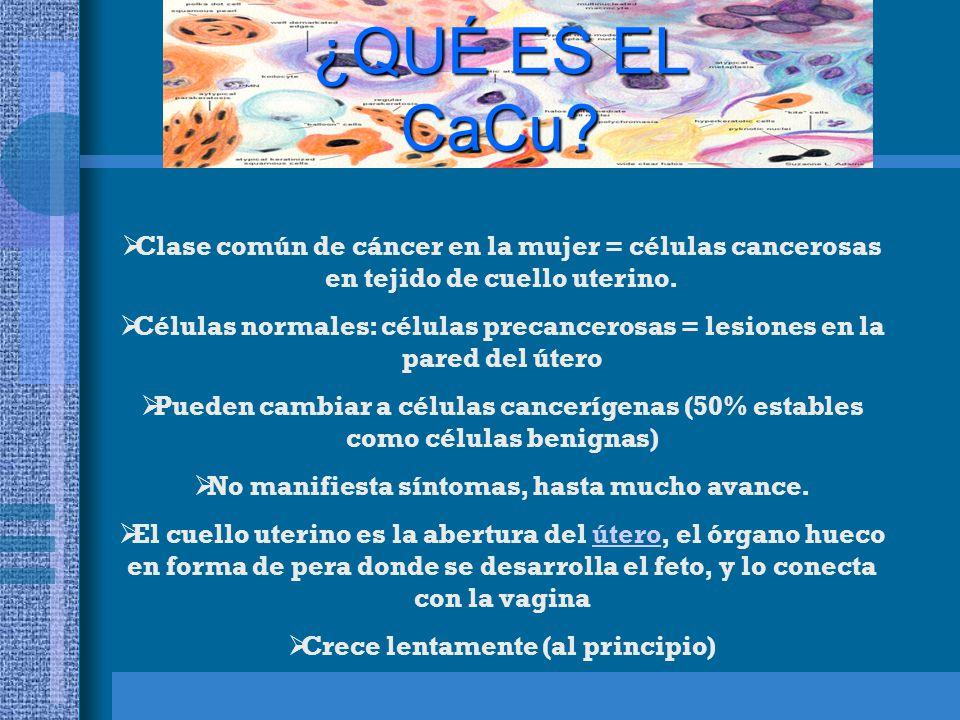 ¿QUÉ ES EL CaCu Clase común de cáncer en la mujer = células cancerosas en tejido de cuello uterino.