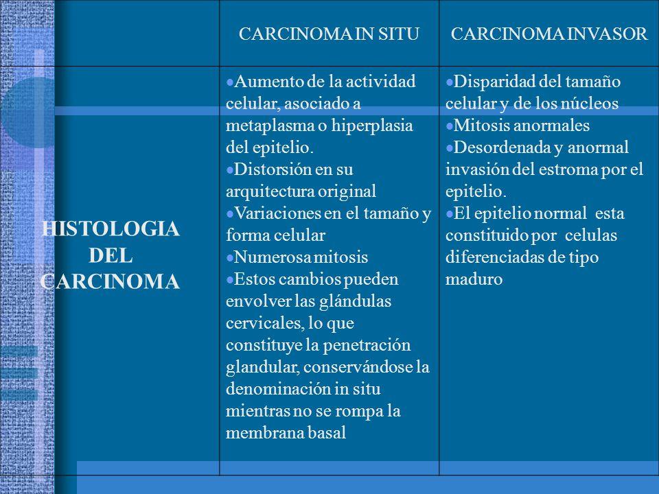 HISTOLOGIA DEL CARCINOMA