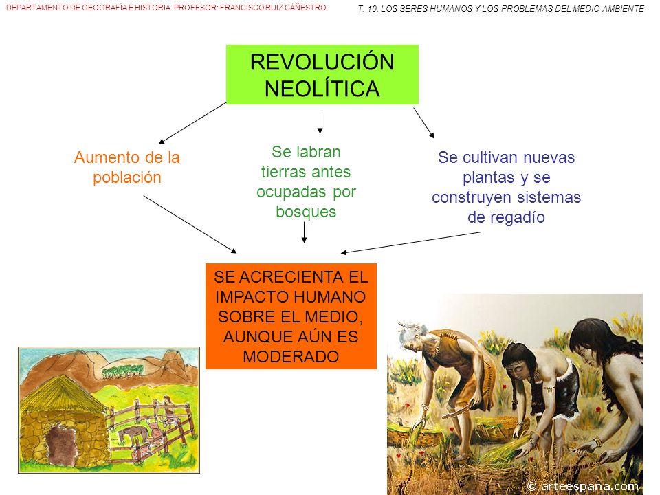 REVOLUCIÓN NEOLÍTICA Se labran tierras antes ocupadas por bosques
