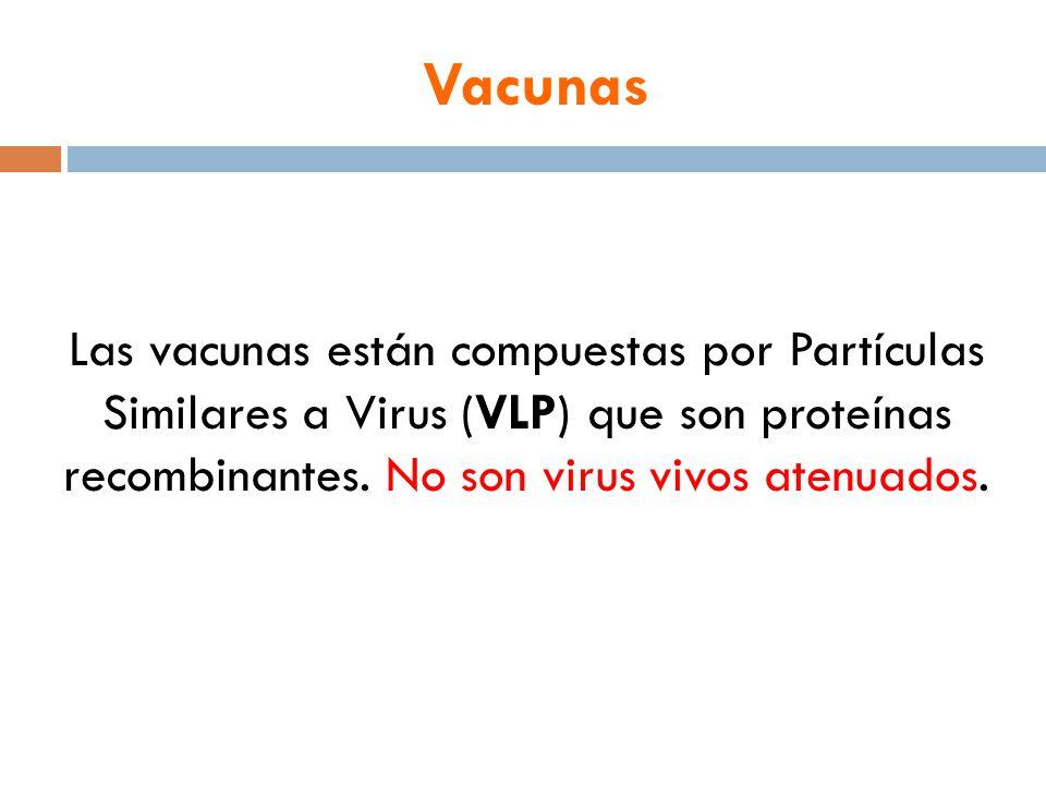 Vacunas Las vacunas están compuestas por Partículas Similares a Virus (VLP) que son proteínas recombinantes.