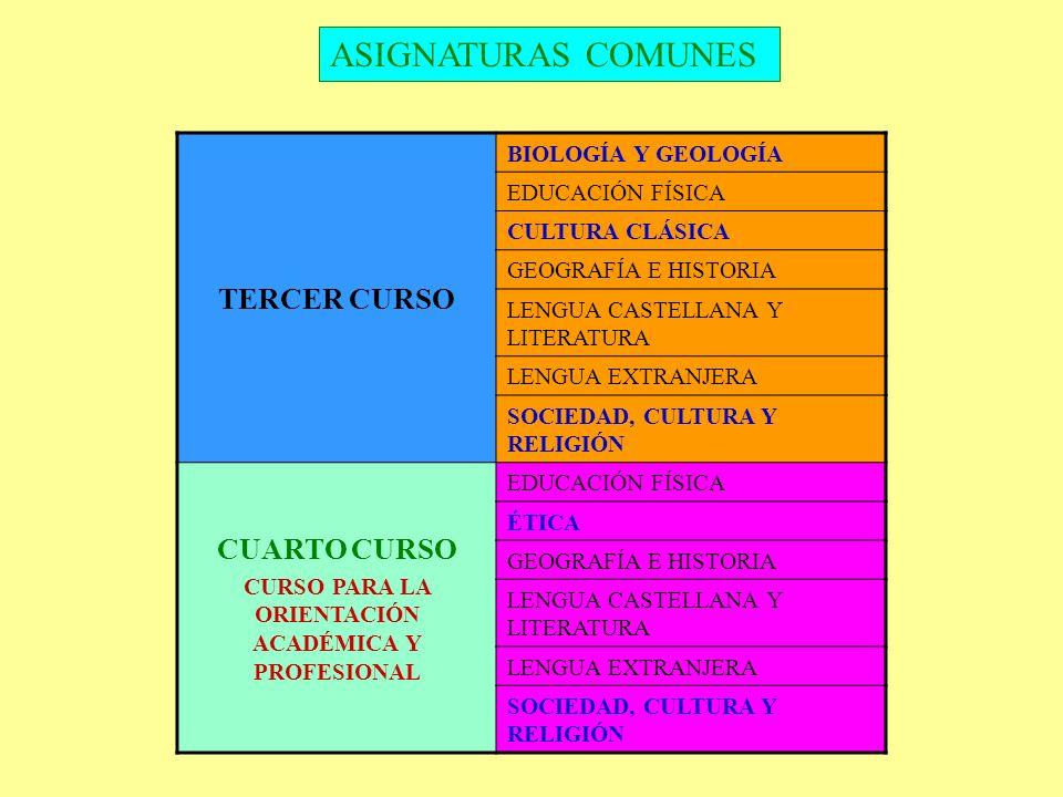 CURSO PARA LA ORIENTACIÓN ACADÉMICA Y PROFESIONAL