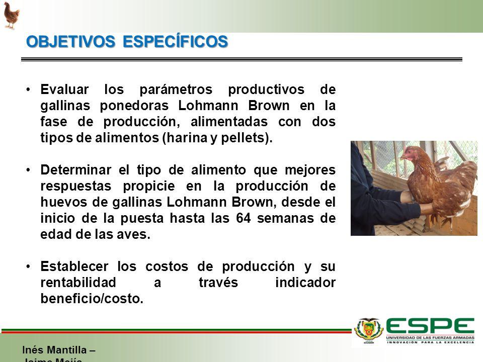 Efecto del suministro de dos presentaciones de alimento for Alimentos balanceados para truchas