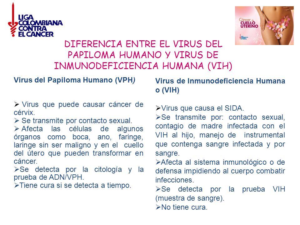 DIFERENCIA ENTRE EL VIRUS DEL PAPILOMA HUMANO Y VIRUS DE INMUNODEFICIENCIA HUMANA (VIH)
