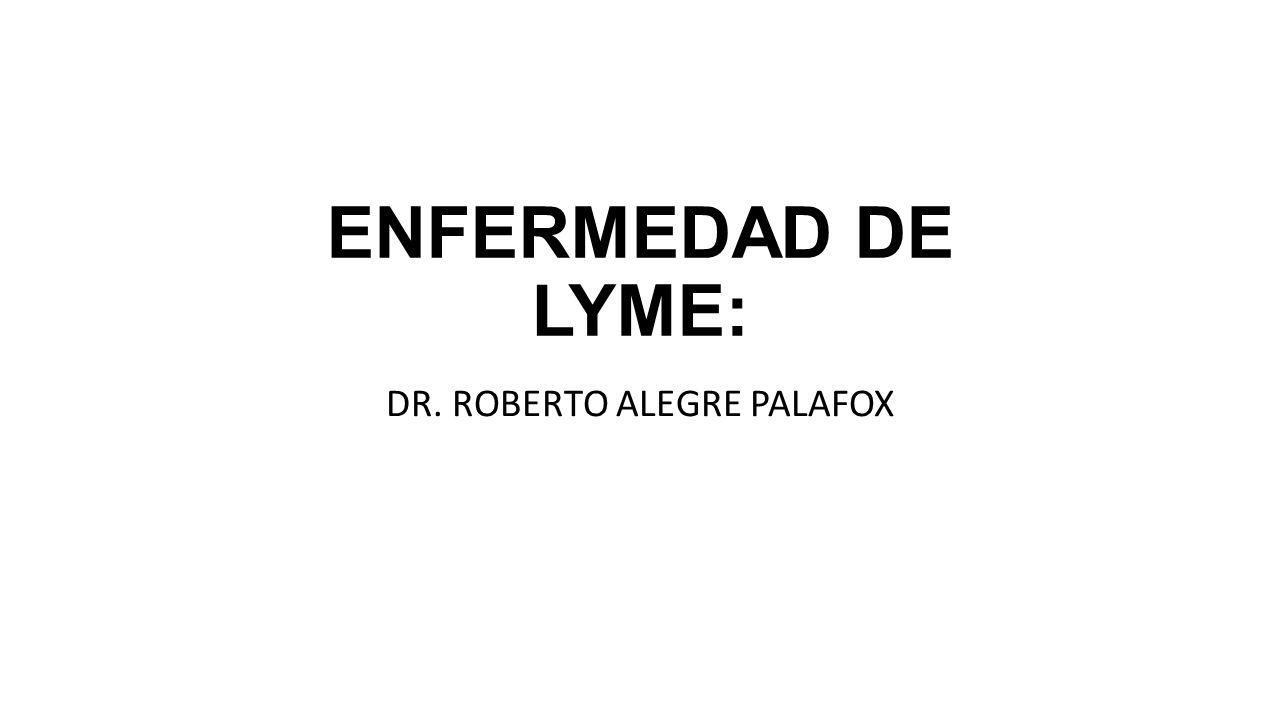DR. ROBERTO ALEGRE PALAFOX