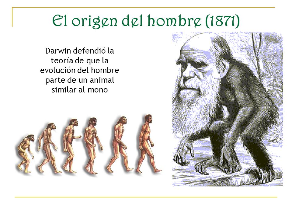 La evolucion del hombre yahoo dating 6