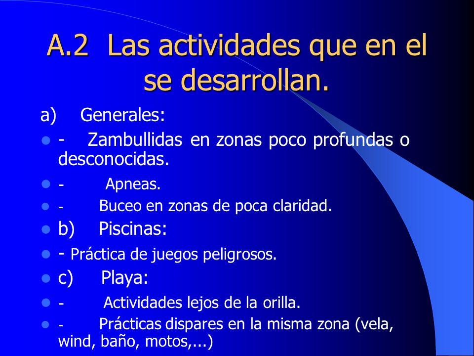 A.2 Las actividades que en el se desarrollan.