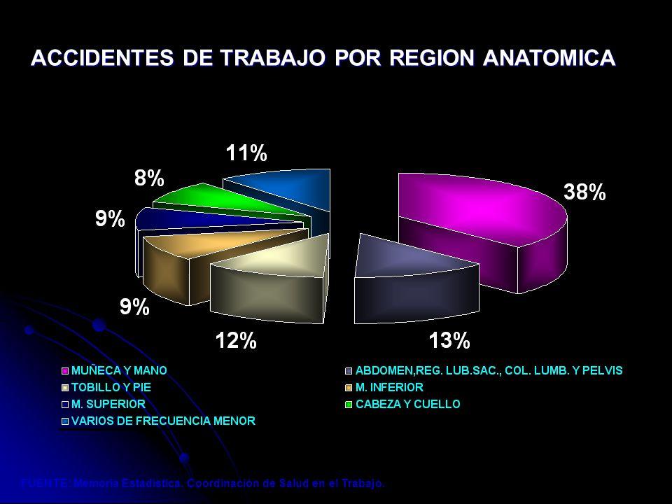 Bonito Anatomía Balón Sac Bandera - Anatomía de Las Imágenesdel ...