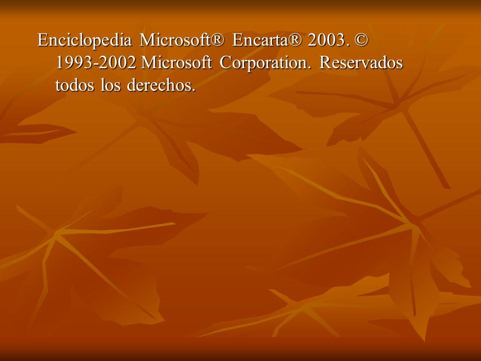 Enciclopedia Microsoft® Encarta® 2003