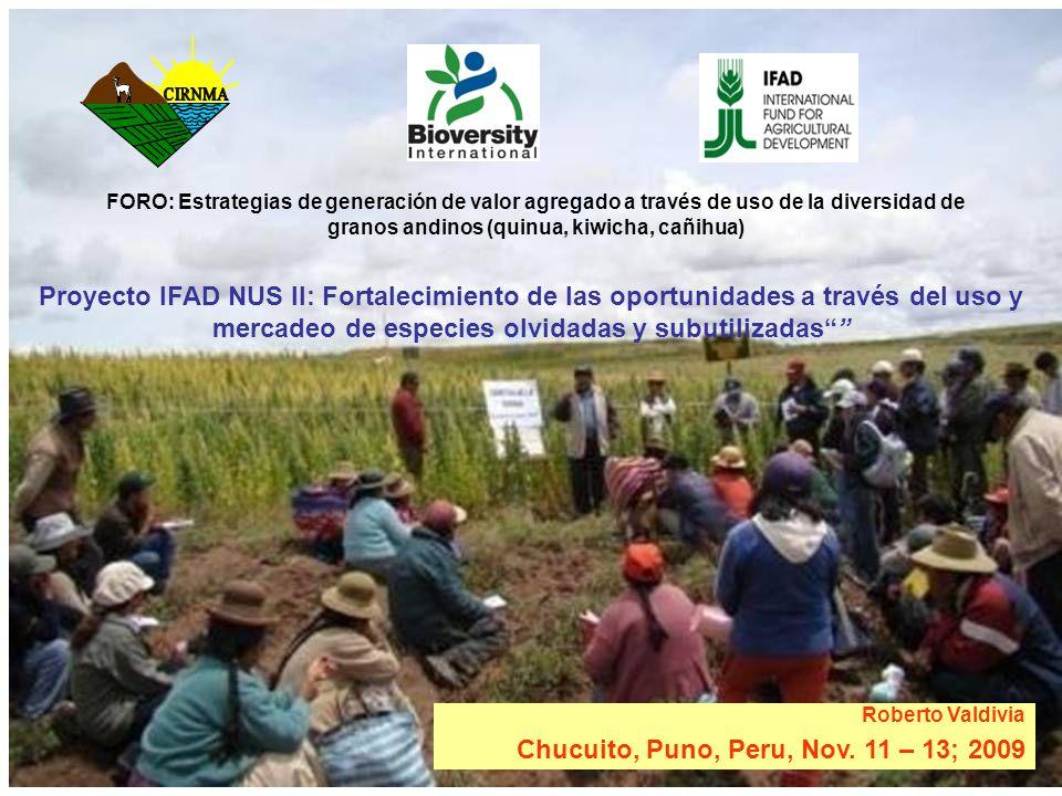 Chucuito, Puno, Peru, Nov. 11 – 13; 2009