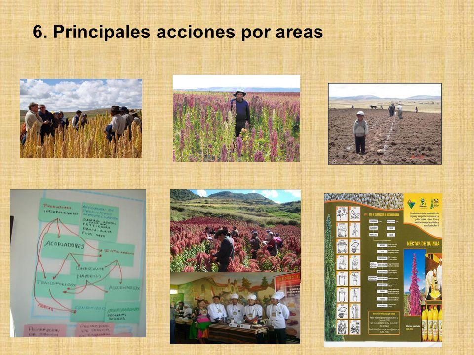 6. Principales acciones por areas