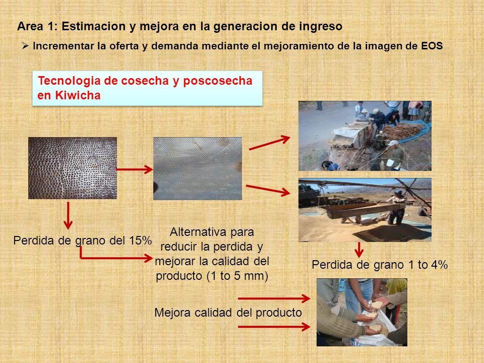 Area 1: Estimacion y mejora en la generacion de ingreso