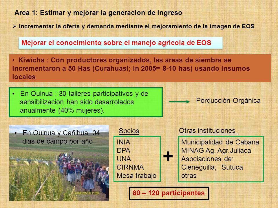 + Area 1: Estimar y mejorar la generacion de ingreso