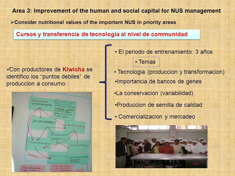 Area 3: Improvement of the human and social capital for NUS management