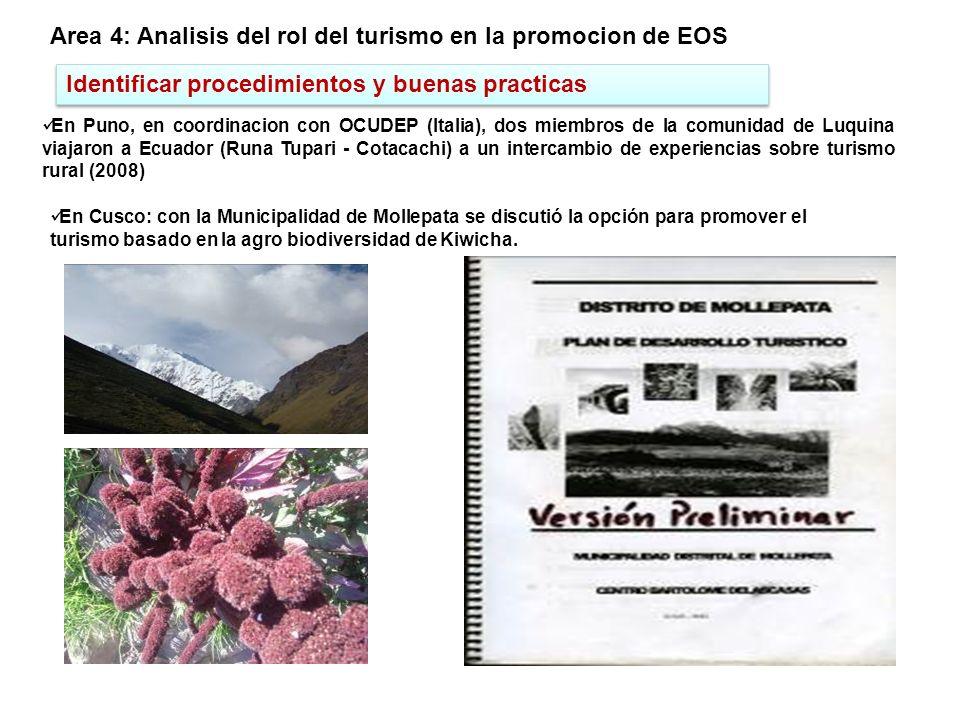 Area 4: Analisis del rol del turismo en la promocion de EOS