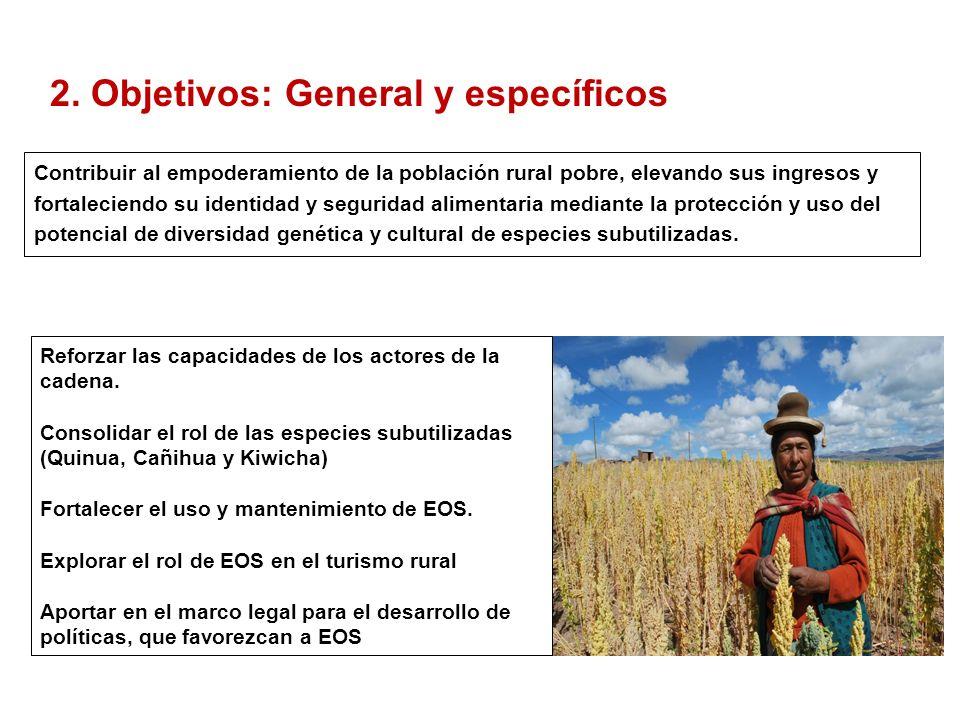 2. Objetivos: General y específicos