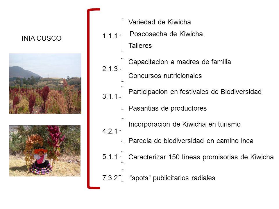 Variedad de Kiwicha Poscosecha de Kiwicha. 1.1.1. INIA CUSCO. Talleres. Capacitacion a madres de familia.