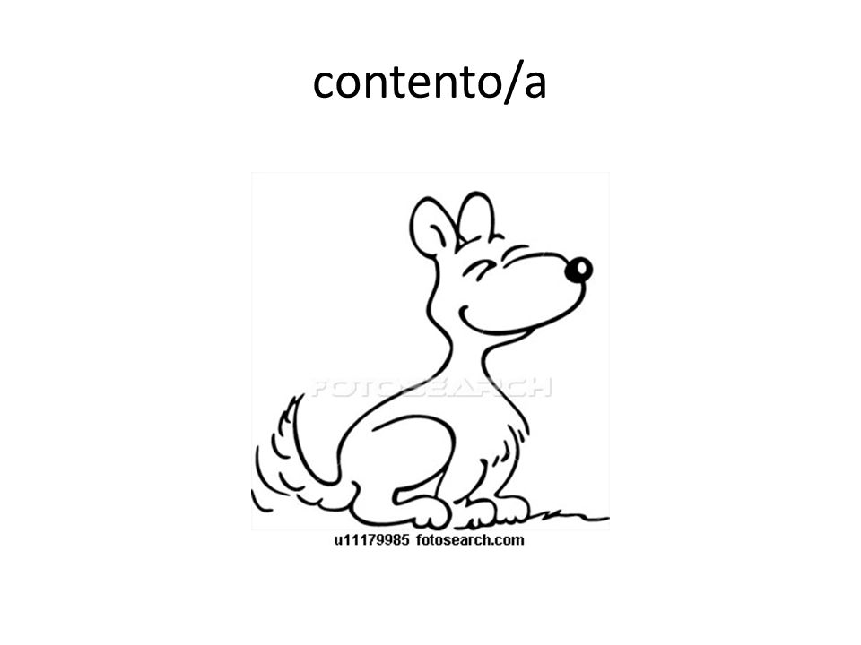 contento/a