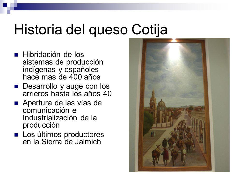 Historia del queso Cotija