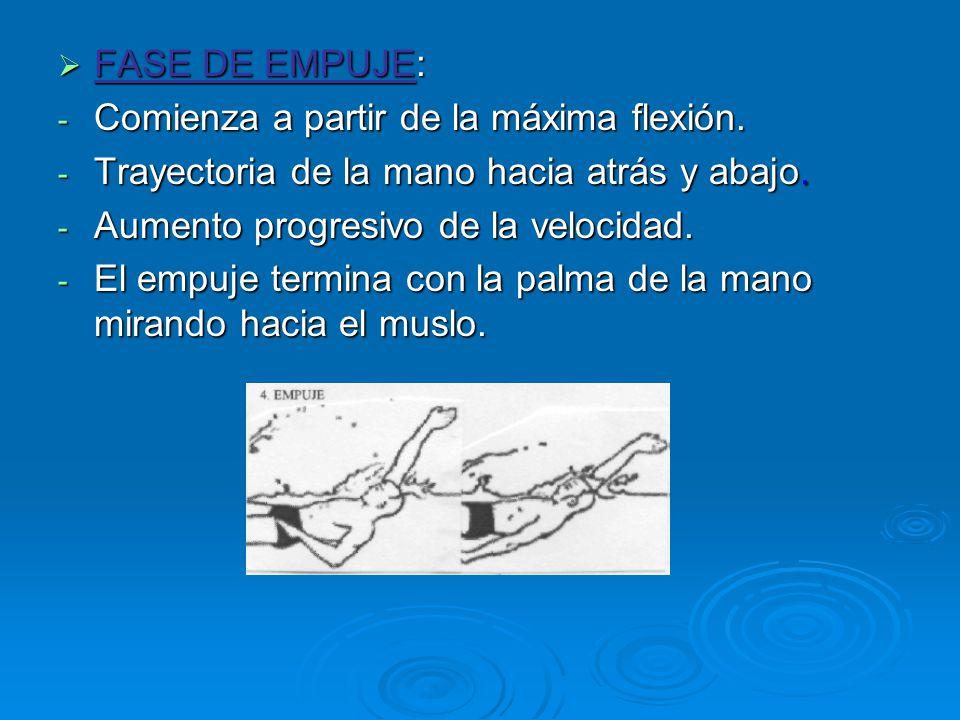 FASE DE EMPUJE: Comienza a partir de la máxima flexión. Trayectoria de la mano hacia atrás y abajo.