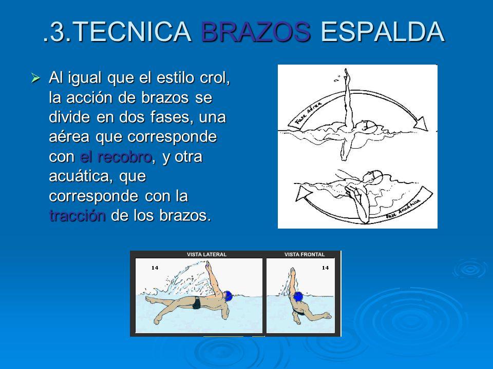 .3.TECNICA BRAZOS ESPALDA