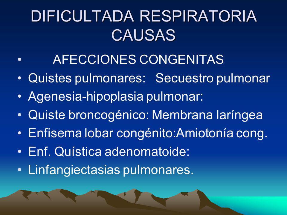 DIFICULTADA RESPIRATORIA CAUSAS