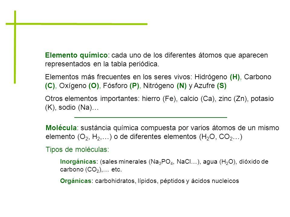 las molculas tema 2 5 3 a p p c g p p c 5 3 aula de milagro 4 elemento flavorsomefo gallery - Tabla Periodica De Los Elementos H2o