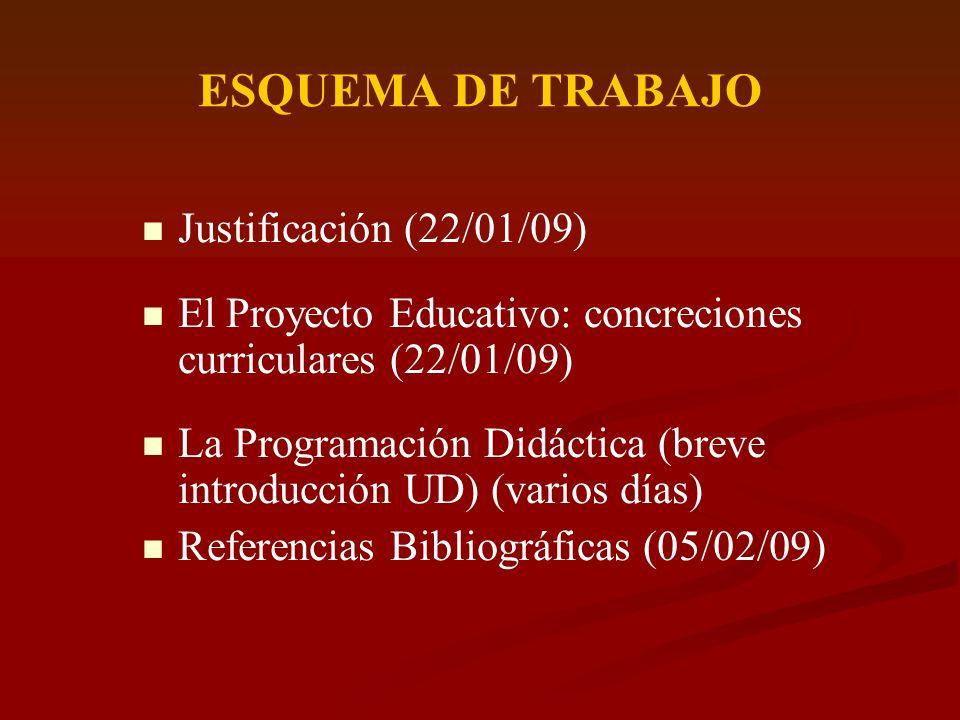 ESQUEMA DE TRABAJO Justificación (22/01/09)