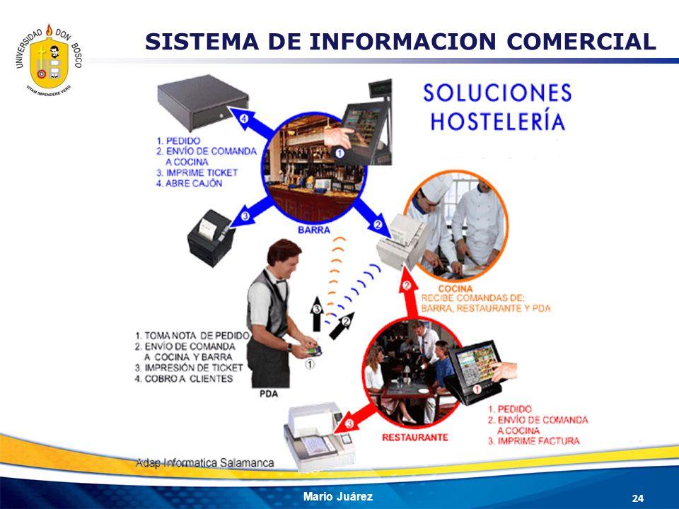 SISTEMA DE INFORMACION COMERCIAL