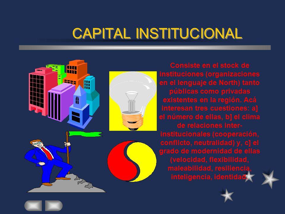 CAPITAL INSTITUCIONAL