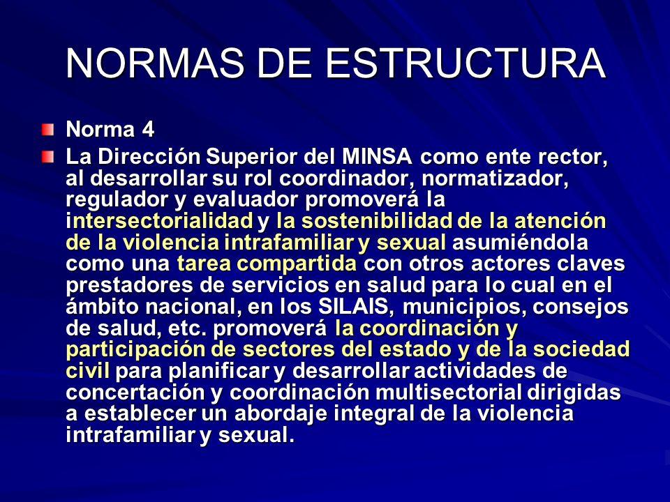 NORMAS DE ESTRUCTURA Norma 4