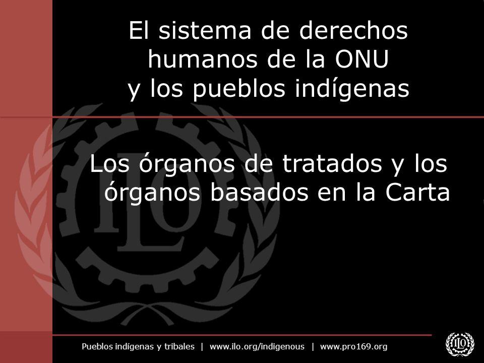 El sistema de derechos humanos de la ONU y los pueblos indígenas