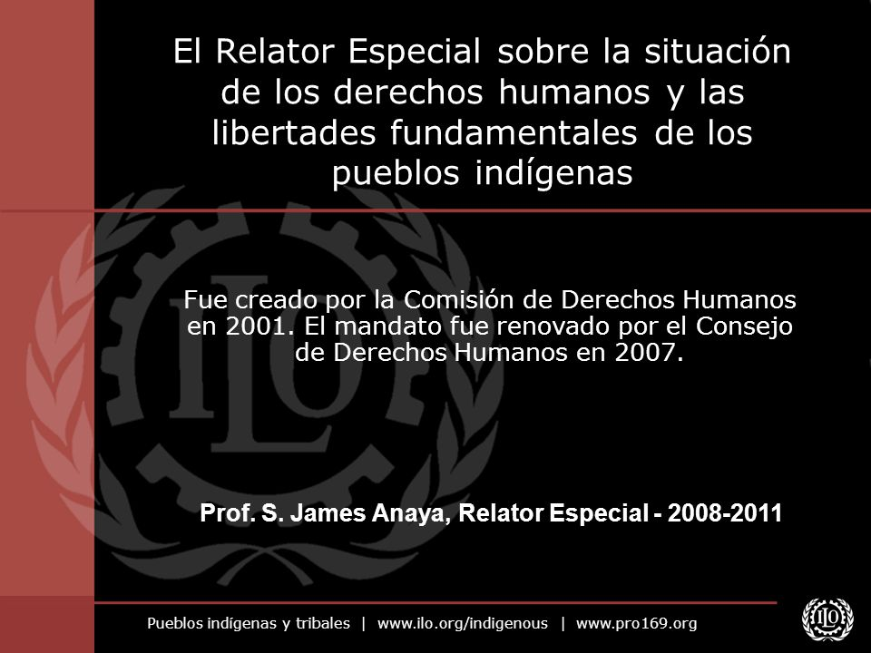 Prof. S. James Anaya, Relator Especial - 2008-2011