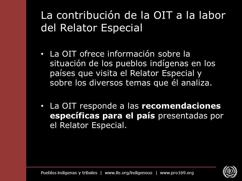 La contribución de la OIT a la labor del Relator Especial