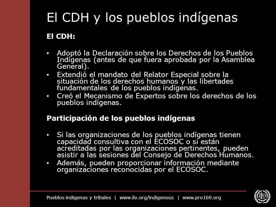 El CDH y los pueblos indígenas